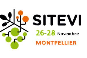 Sitevi-2019